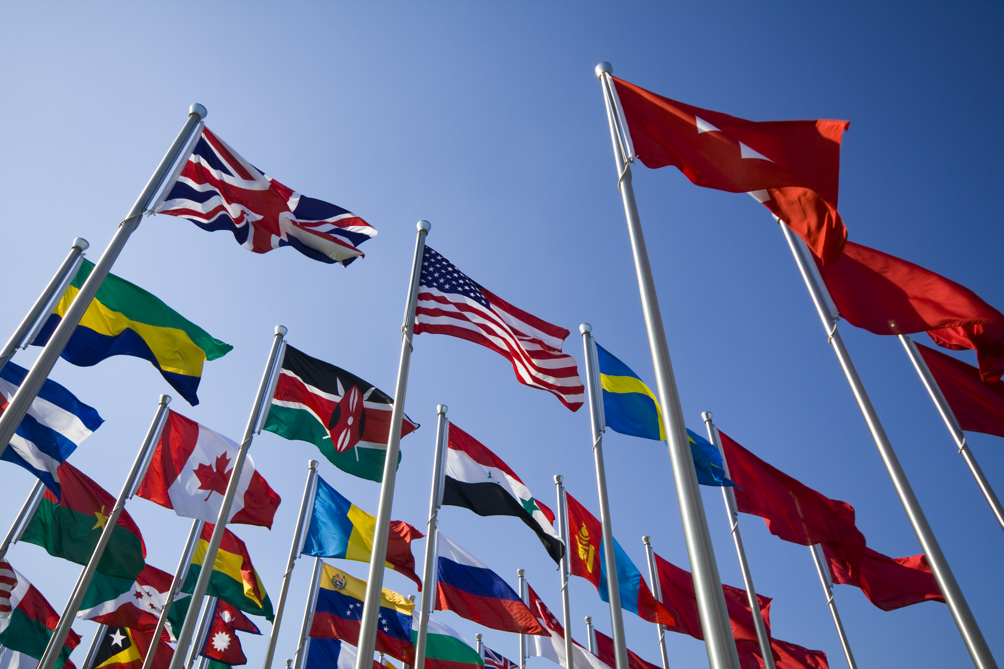 International flags (FATCA)